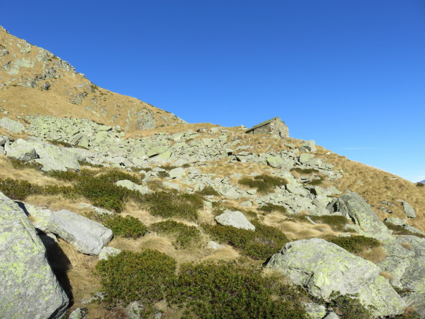 In alto la baita dell'Alpe Vallone