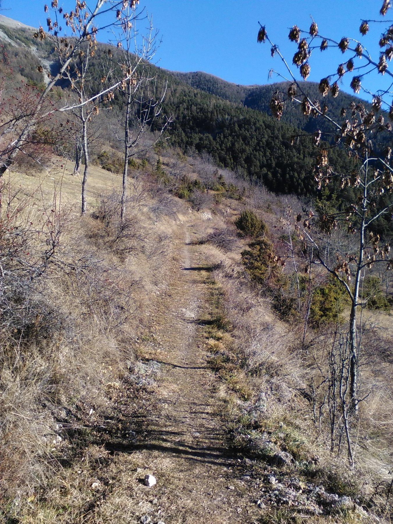 sentiero per gleise