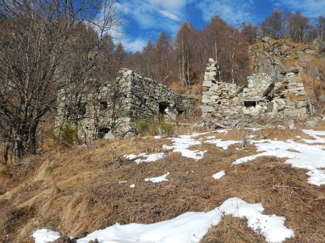 Alpe Turio