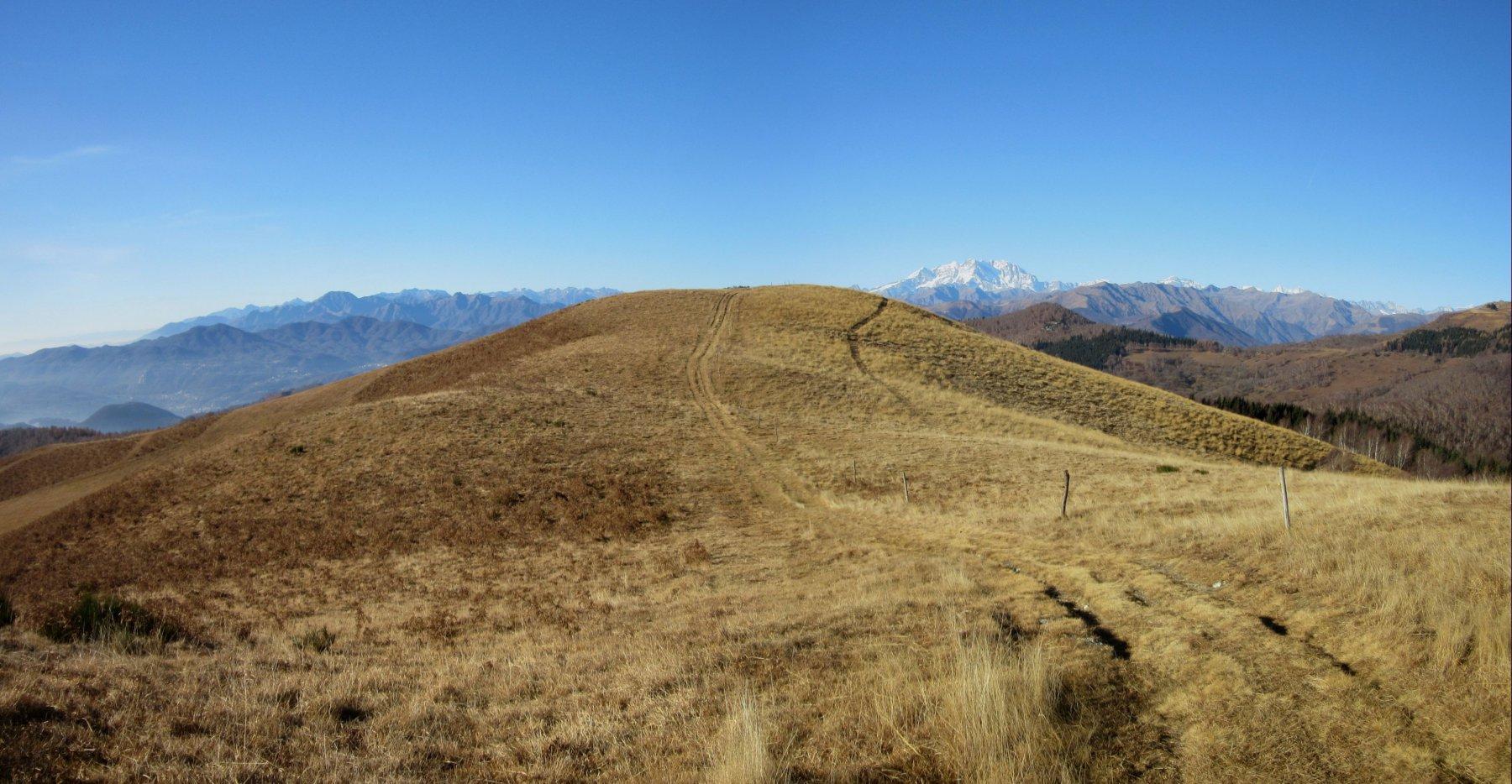 Il panettone del Monte Falò