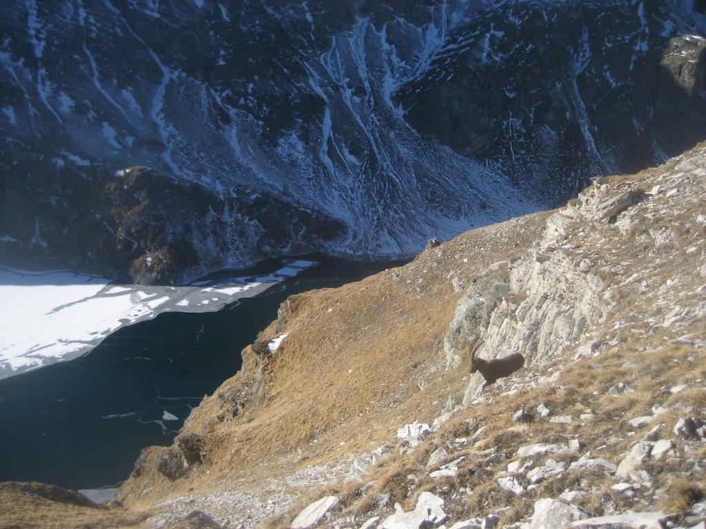 sul tratto tra anticima e cima con il sottostante lago di Cignana