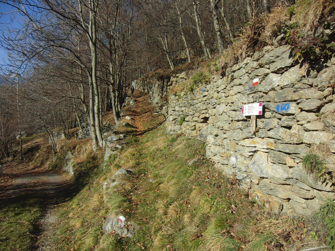 Inizio sentiero a Pianardi