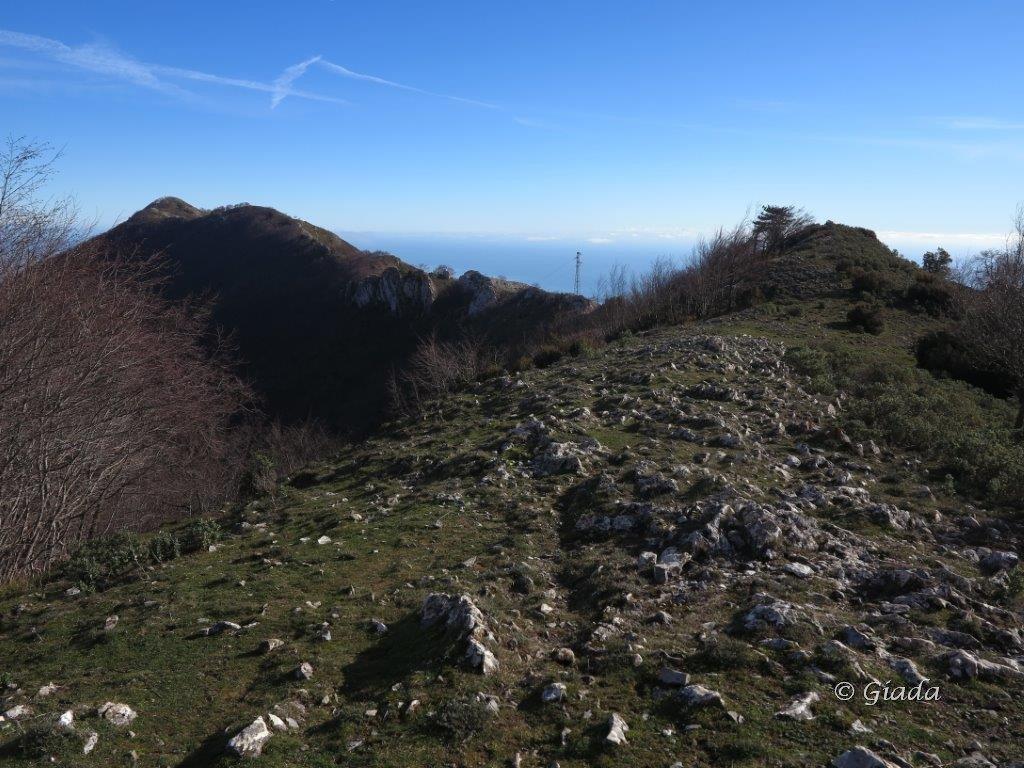Sul crinale verso il Monte Acuto