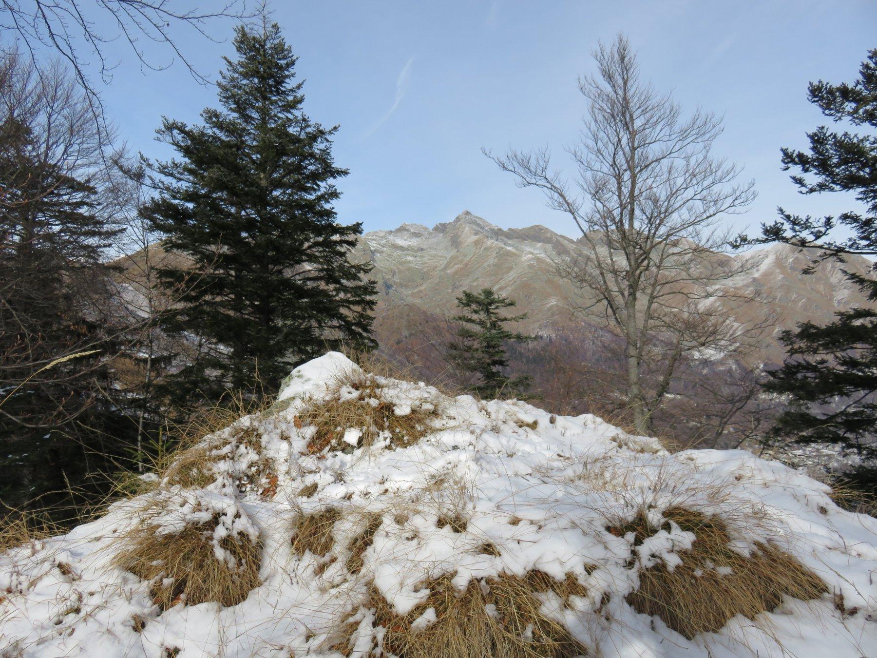 Cima Tirolo con sfondo il Monte Colombo