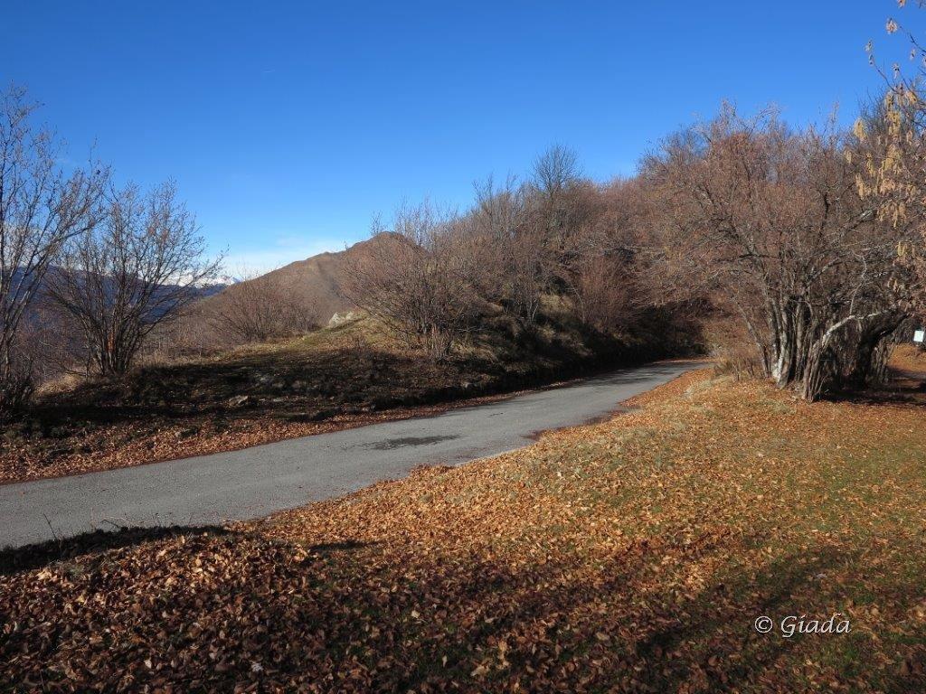 Al Passo Teglia dove si attraversa la strada per prendere il sentiero verso il Carmo dei Brocchi