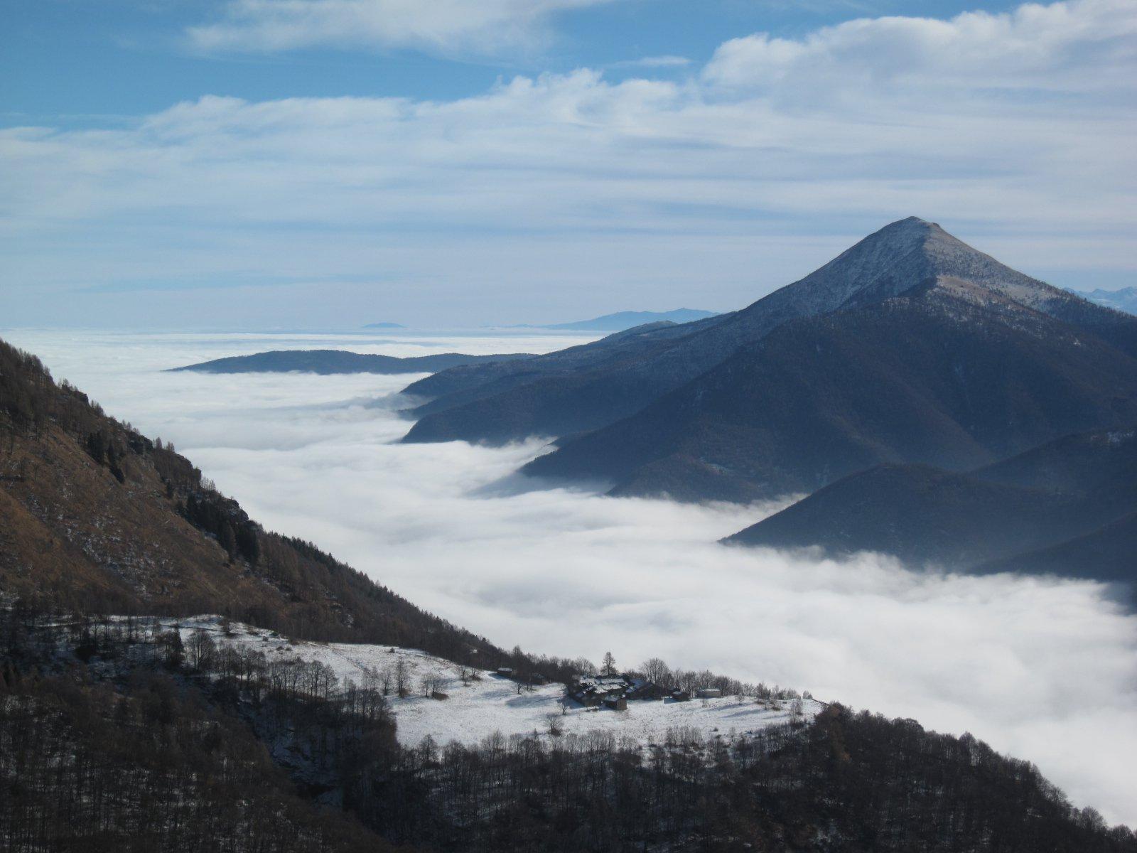 la piana immersa nella nebbia
