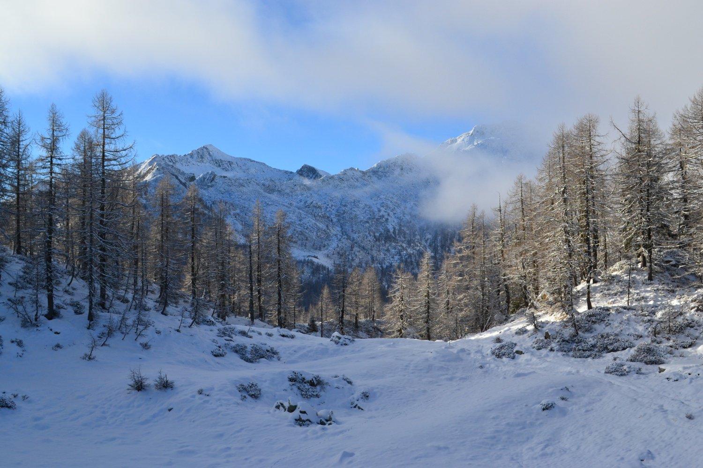 Campo Aostano