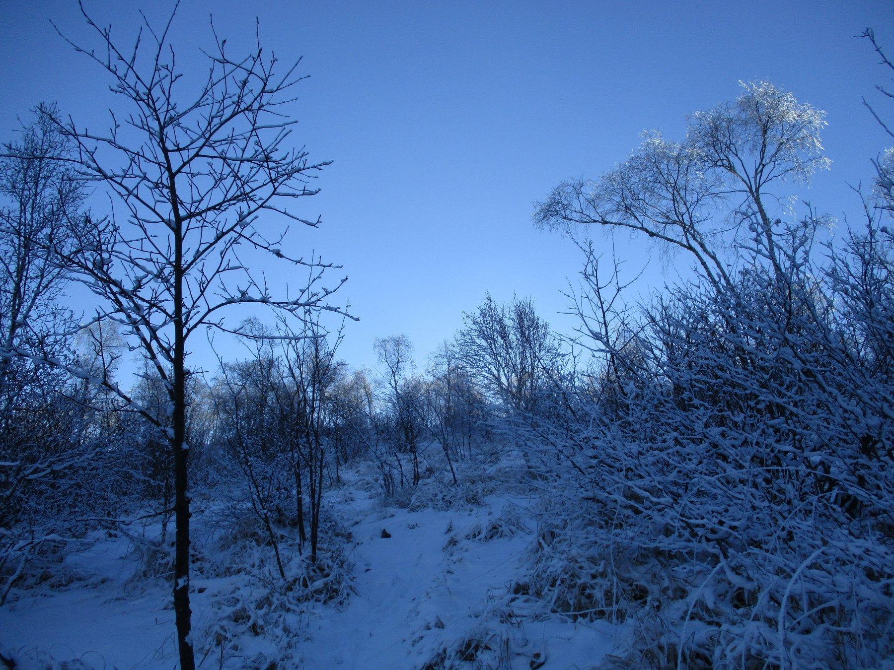 Finalmente inverno