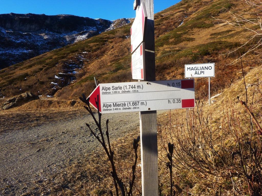 Magliano Alpi ?