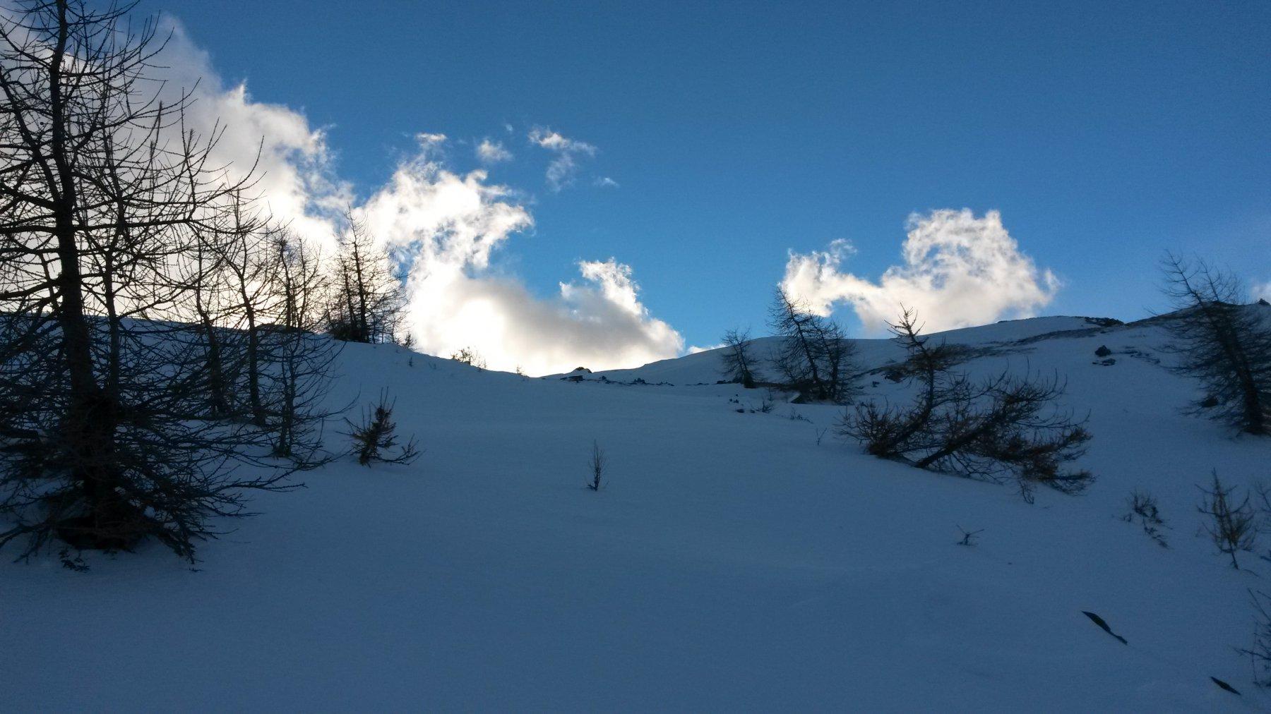 pendii ripidi per tornare all'Alpe