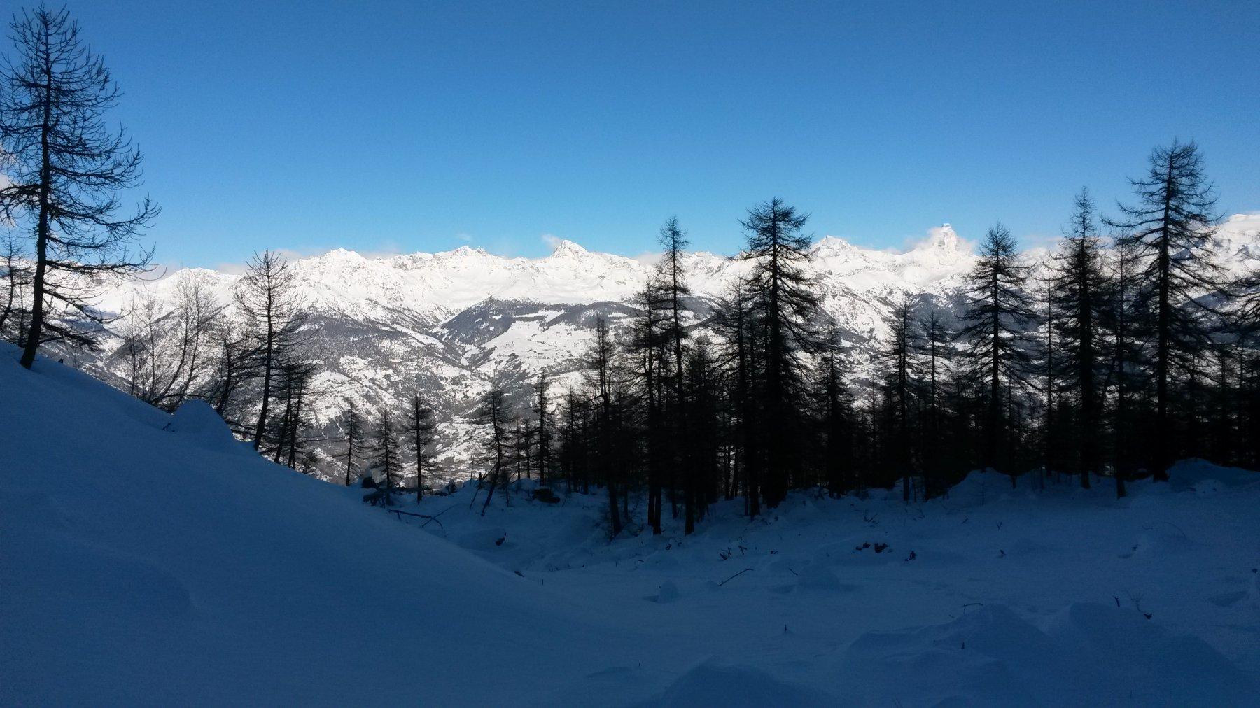 panorama dal pianoro dell'Alpe Corquet