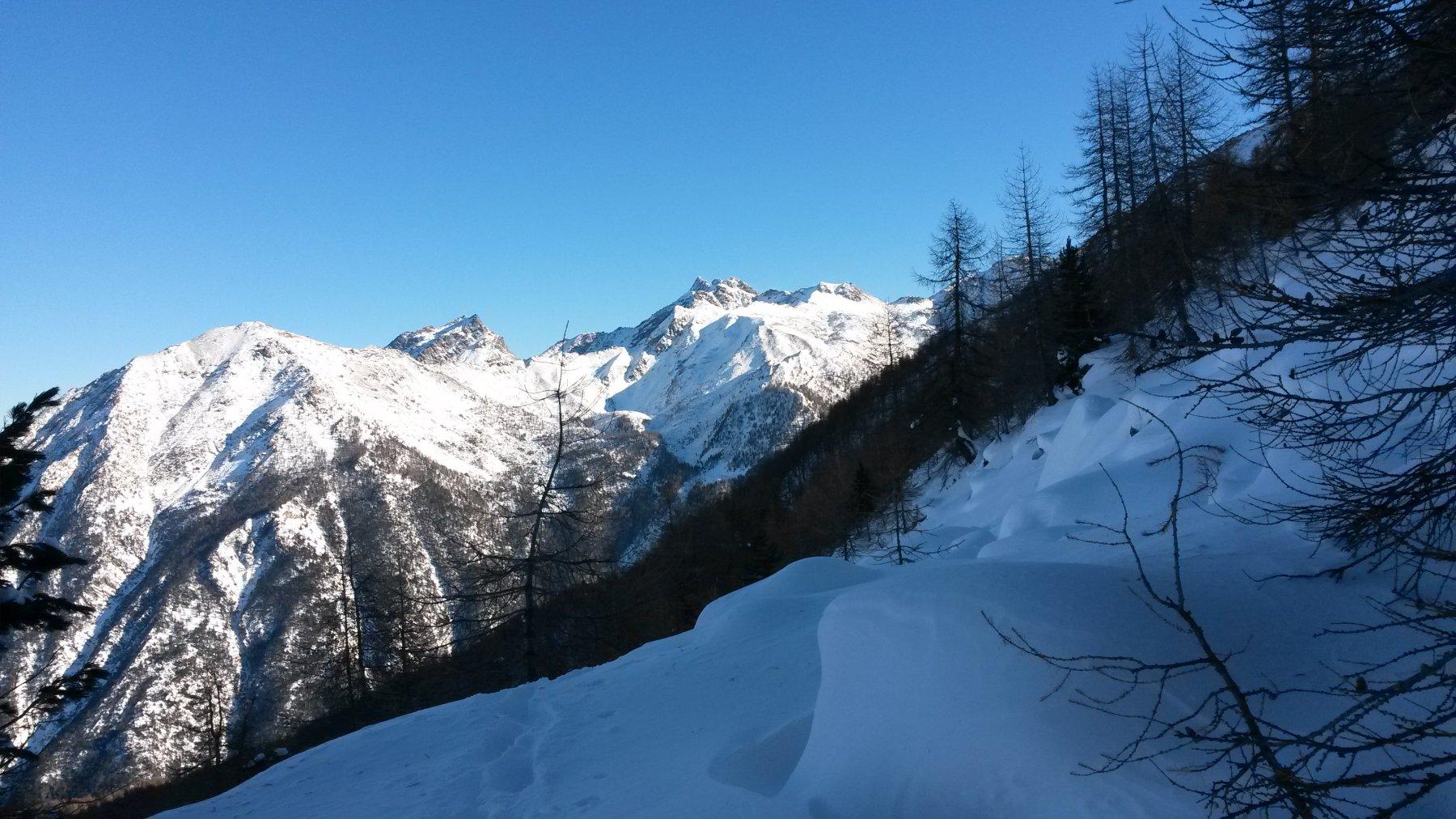 traversi ripidi nel rado bosco sopra l'Alpe Corquet (dietro di noi le montagne del versante orientale della Val Clavité)