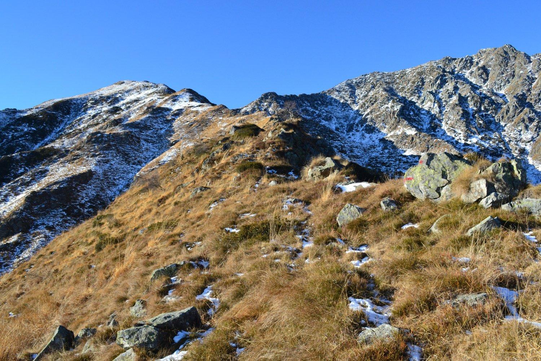 lungo la cresta dopo l'Alpe Farina, con il Barone a destra