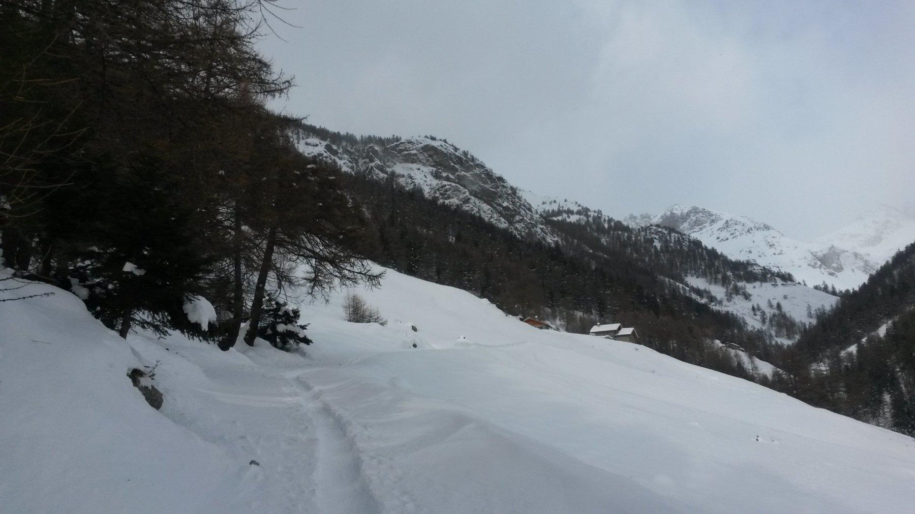 Alpe La Nouva