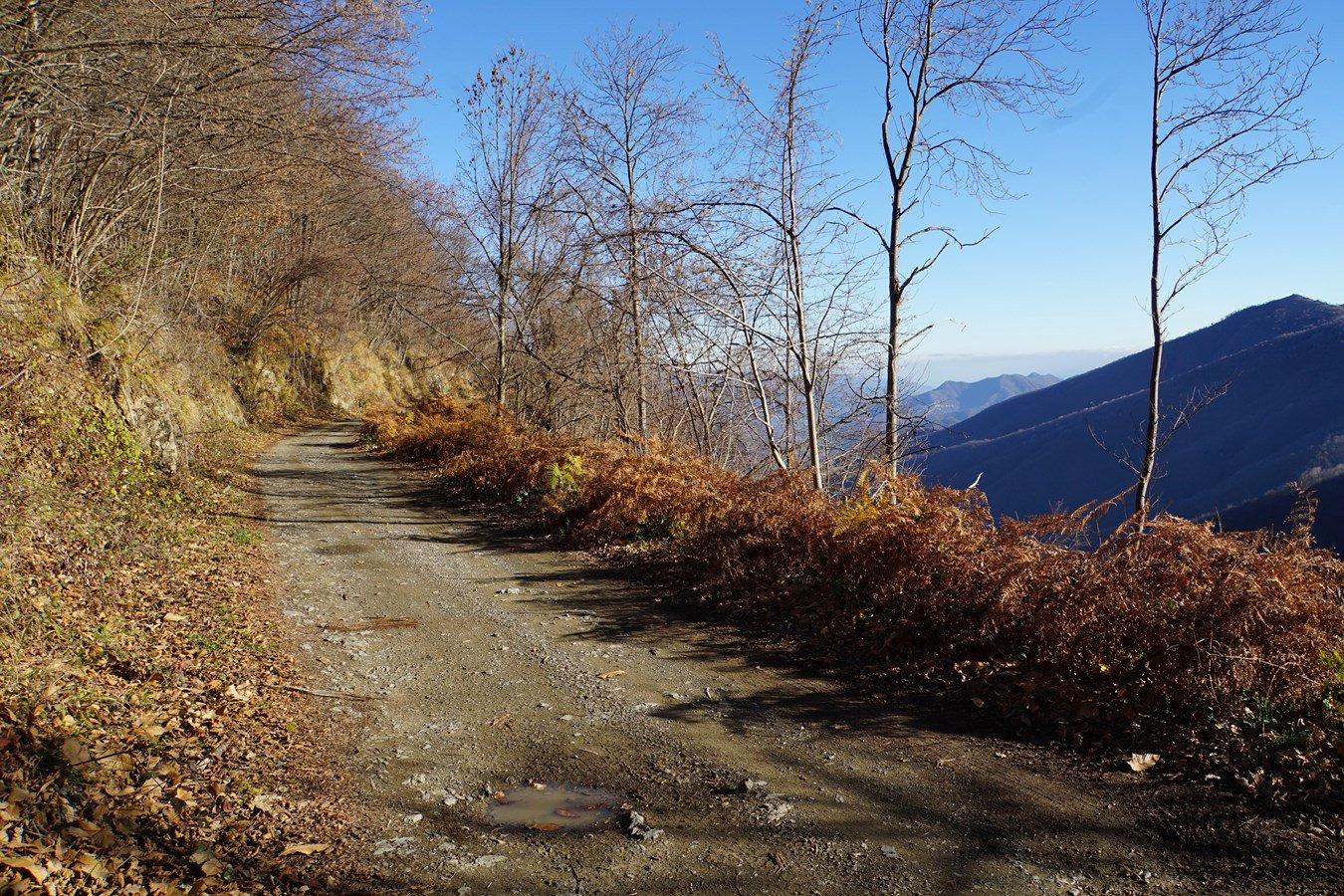 l'asfaltata diventa una bella sterrata panoramica
