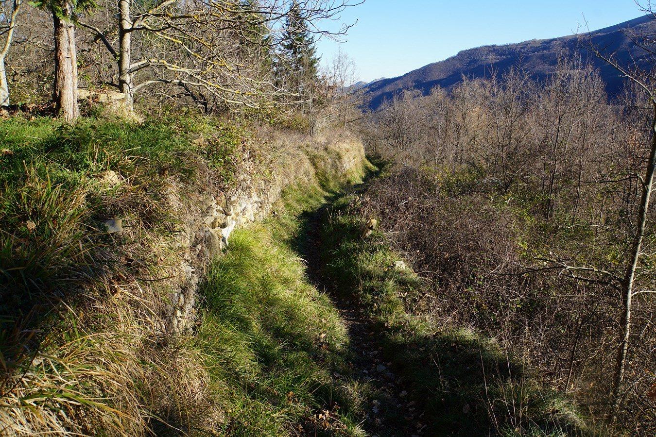 il sentiero che scende/sale dalla dorsale del Prealba a Cenova