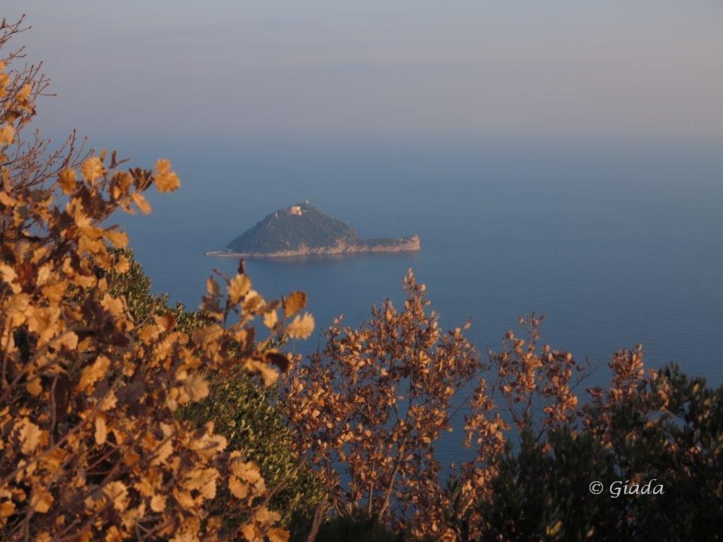 L'isola Gallinara nei colori pomeridiani