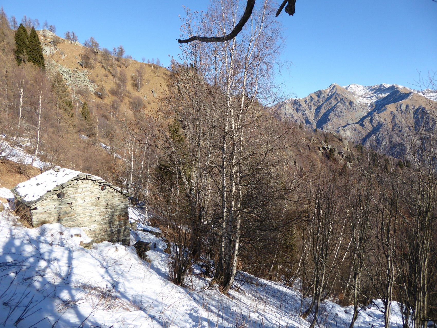 Monte Serena e Vallone di Canaussa dall'Alpe Quota 1542m