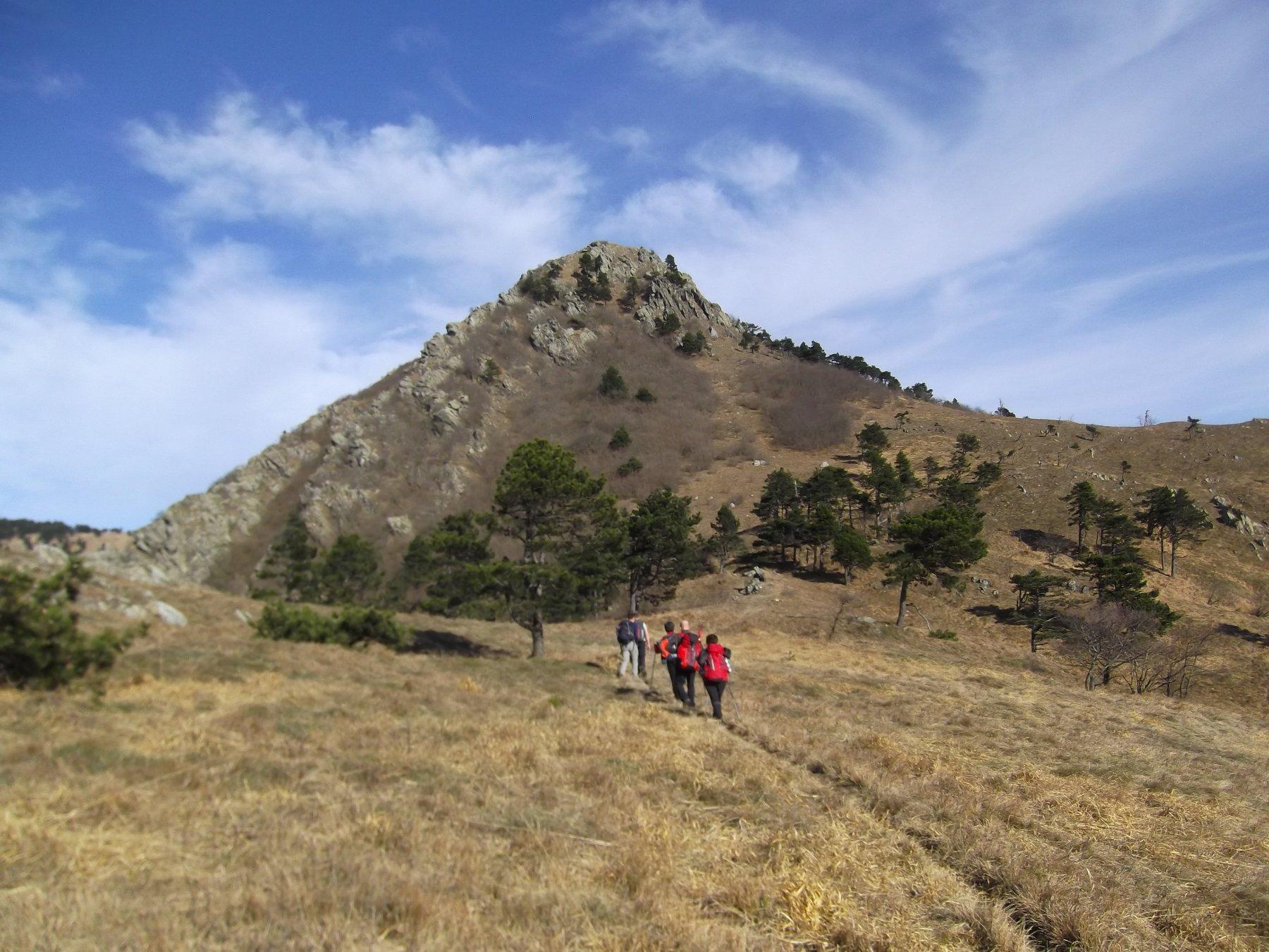 Monte Argentea vicina.