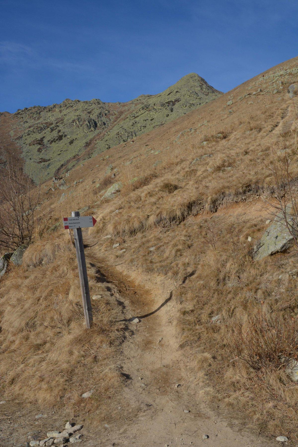 il ripido sentiero che si stacca alla sinistra della rotabile sterrata
