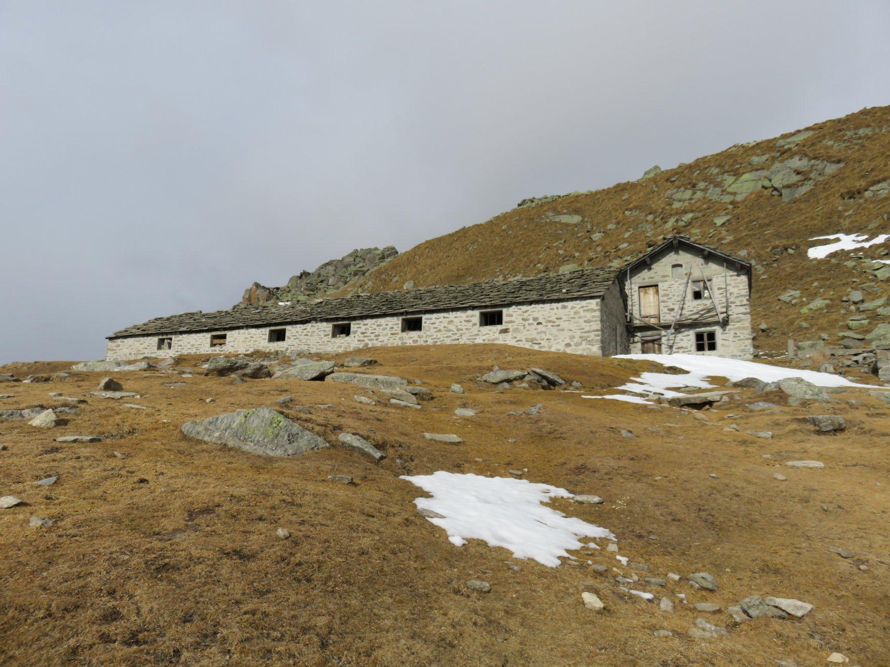 Alpe Saler  e quota 2080