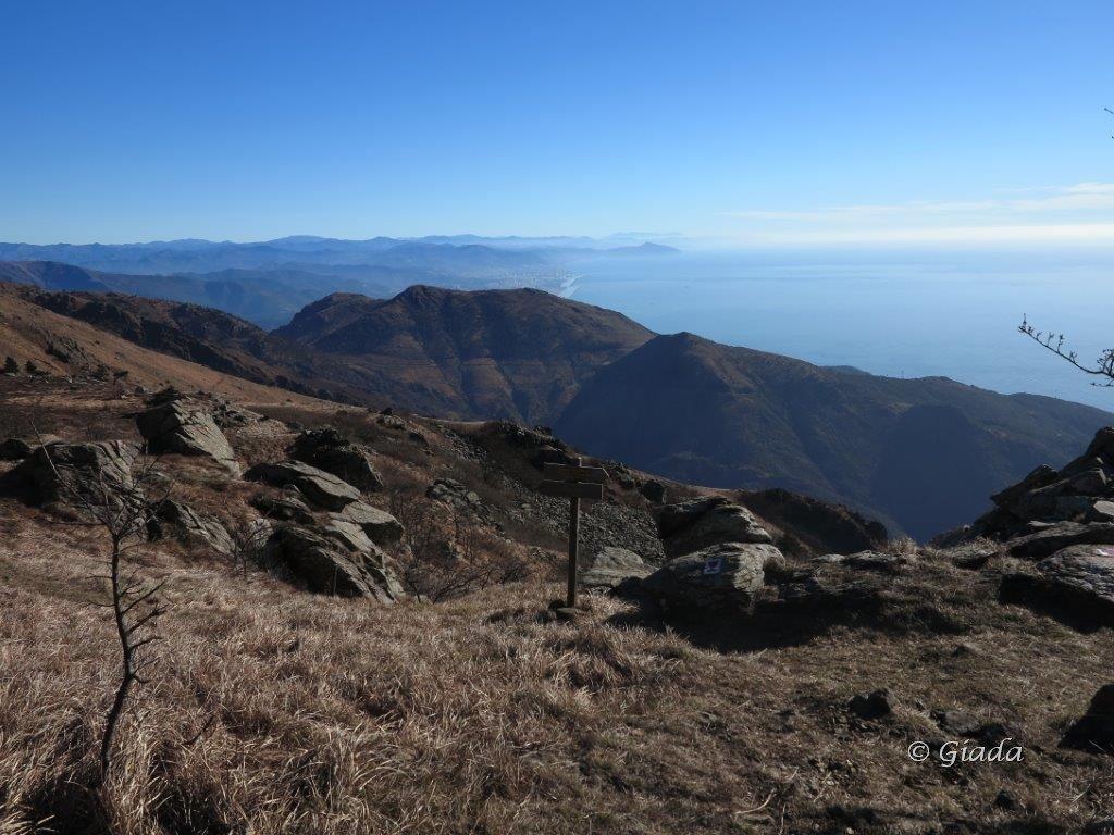 Vista sul Tardia e la costa genovese