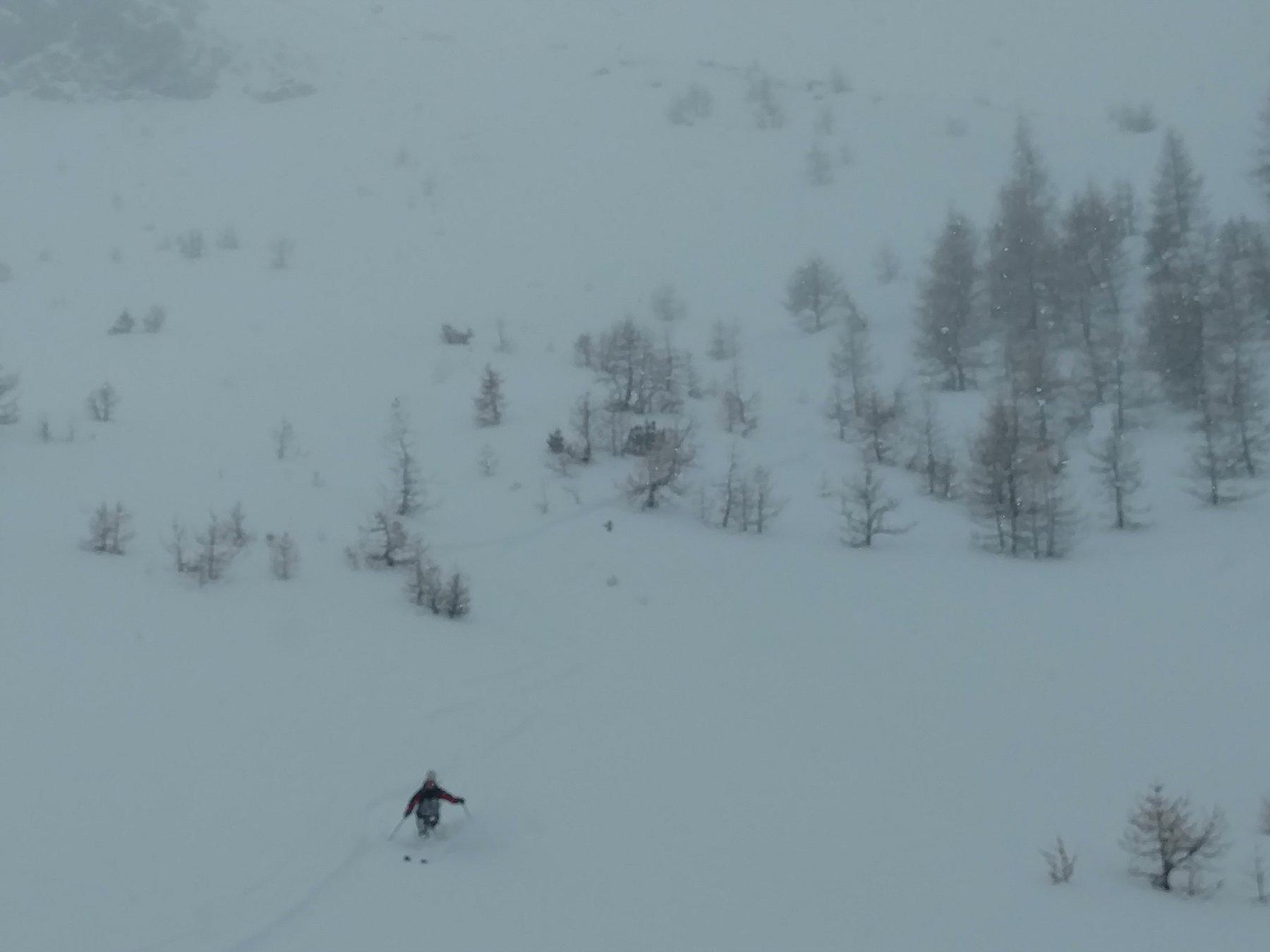 Discesa inizio bosco sotto fitta nevicata