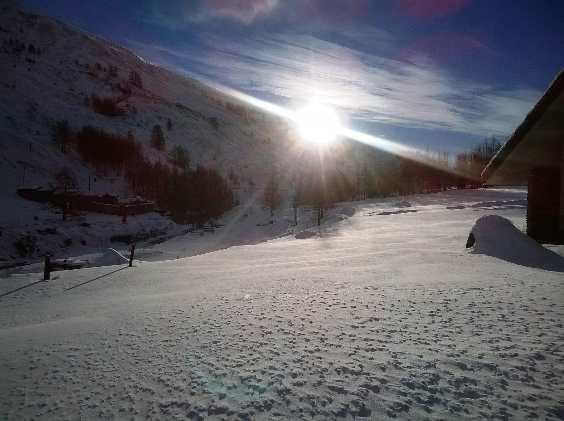 sol levante