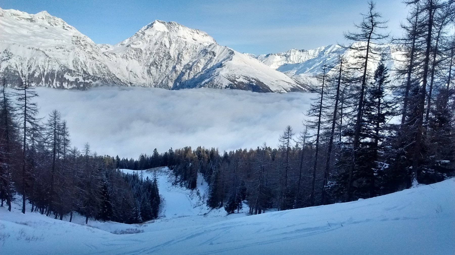 sopra la nebbia