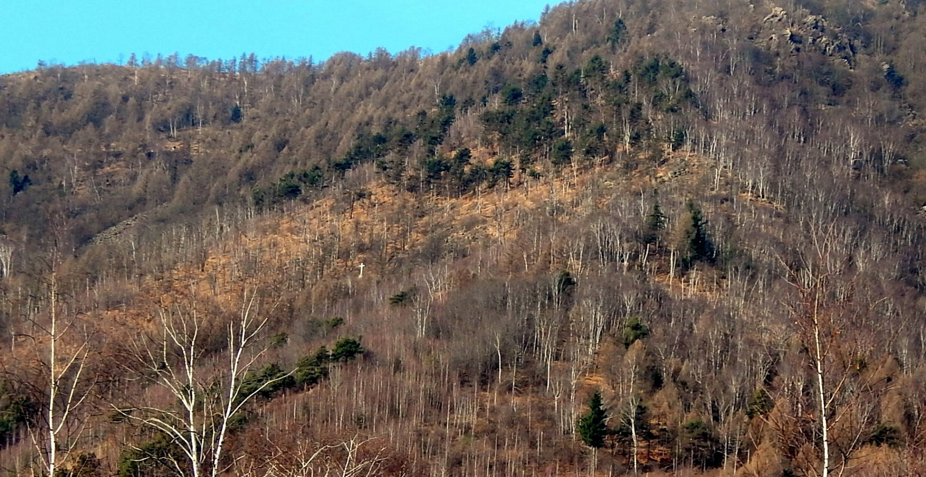 Corno (Monte, Croce del) da Monasterolo 2016-02-24