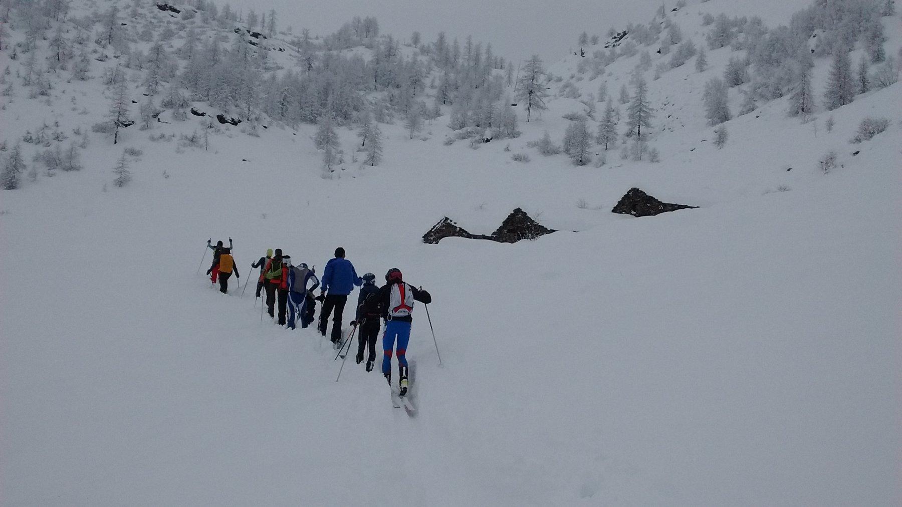 la carovana all'Alpe del Vallone