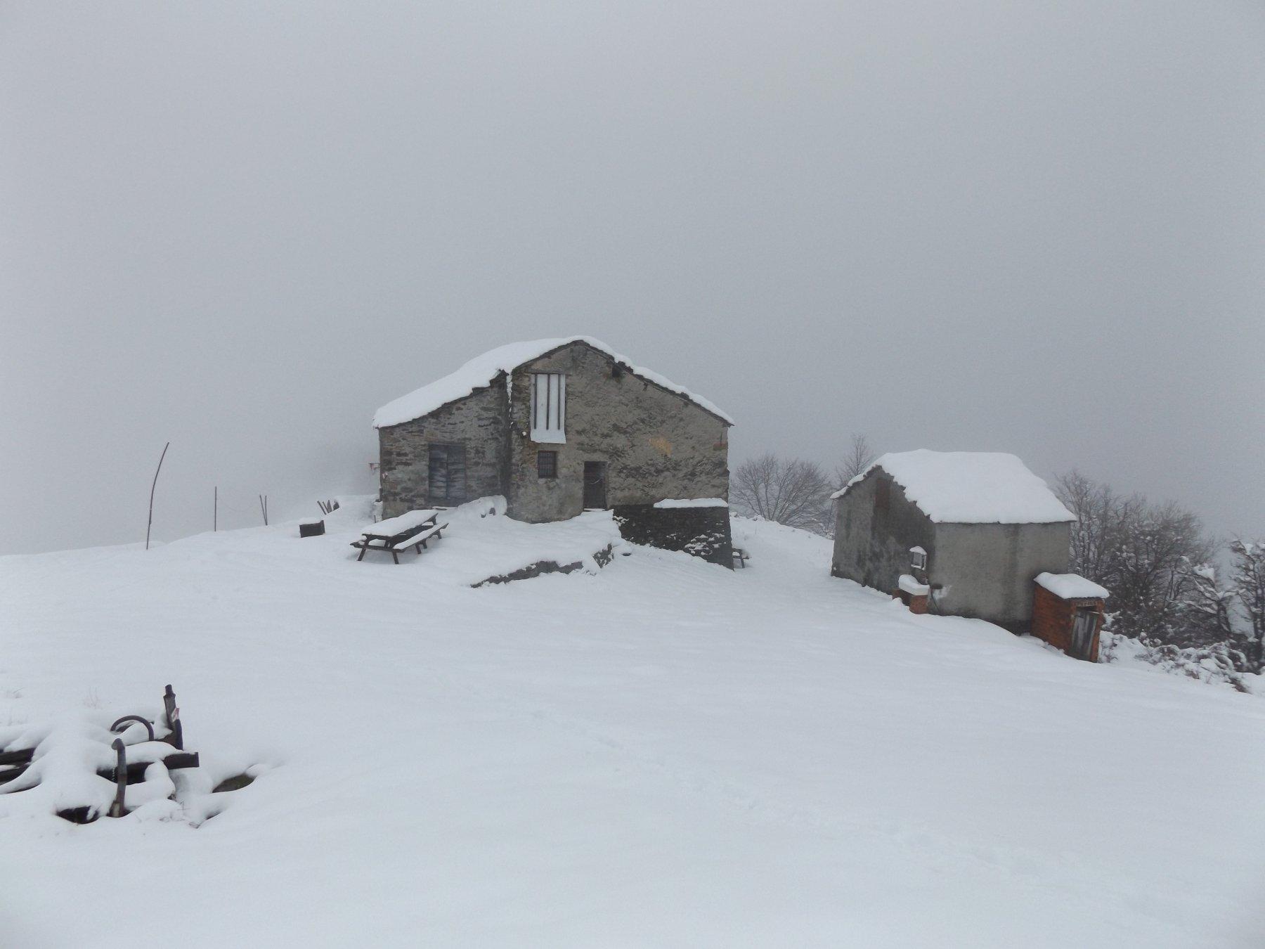 Alpeggi di Monsuffietto