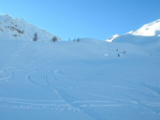 Bella neve polverosa   I   Belle neige poudreuse   I   Powdery snow in droves   I   Schöner Pulverschnee   I   Buena nieve polvo