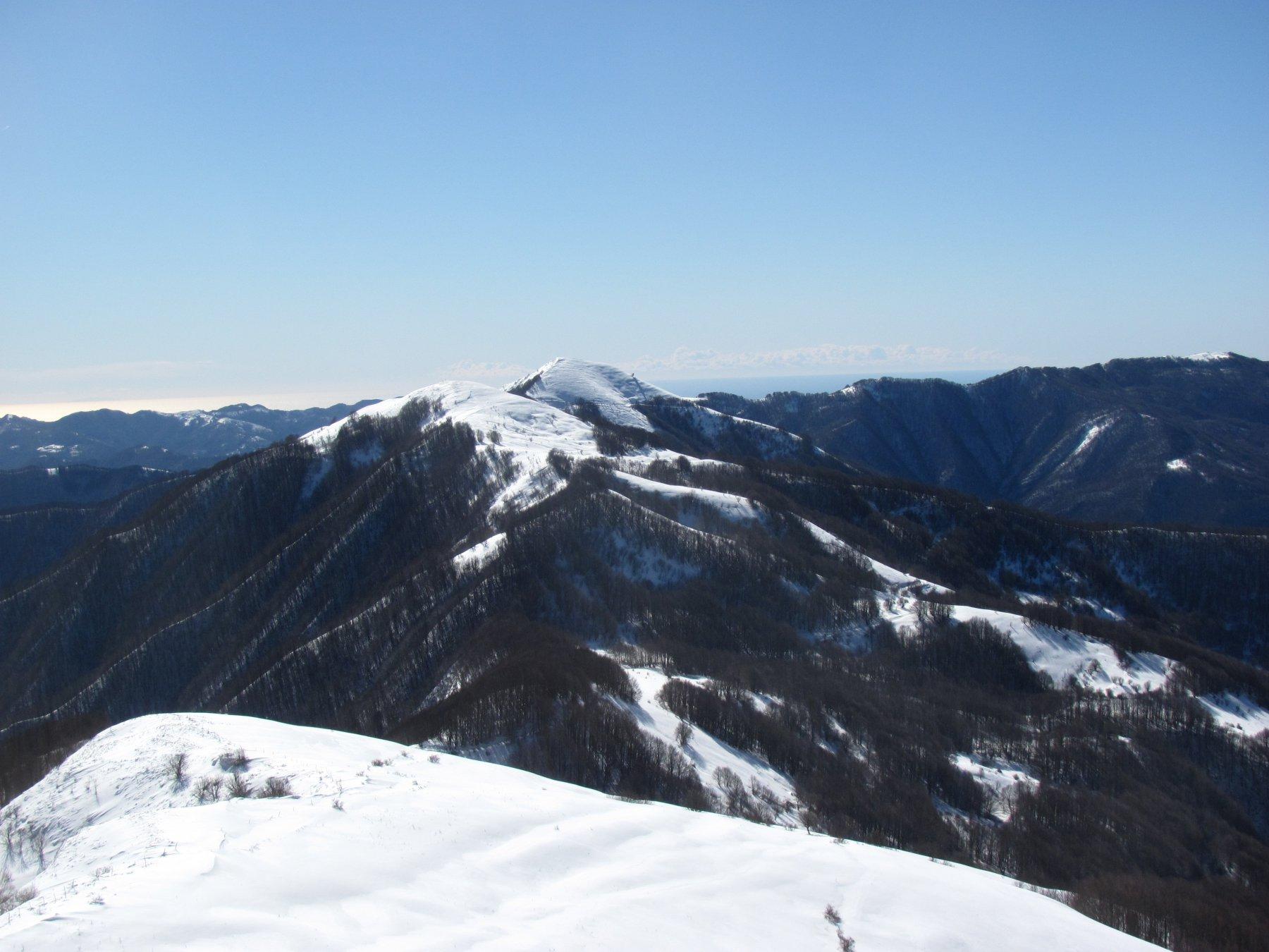 La cresta che prosegue verso il M. Rondino e il Carmo, con discreti saliscendi