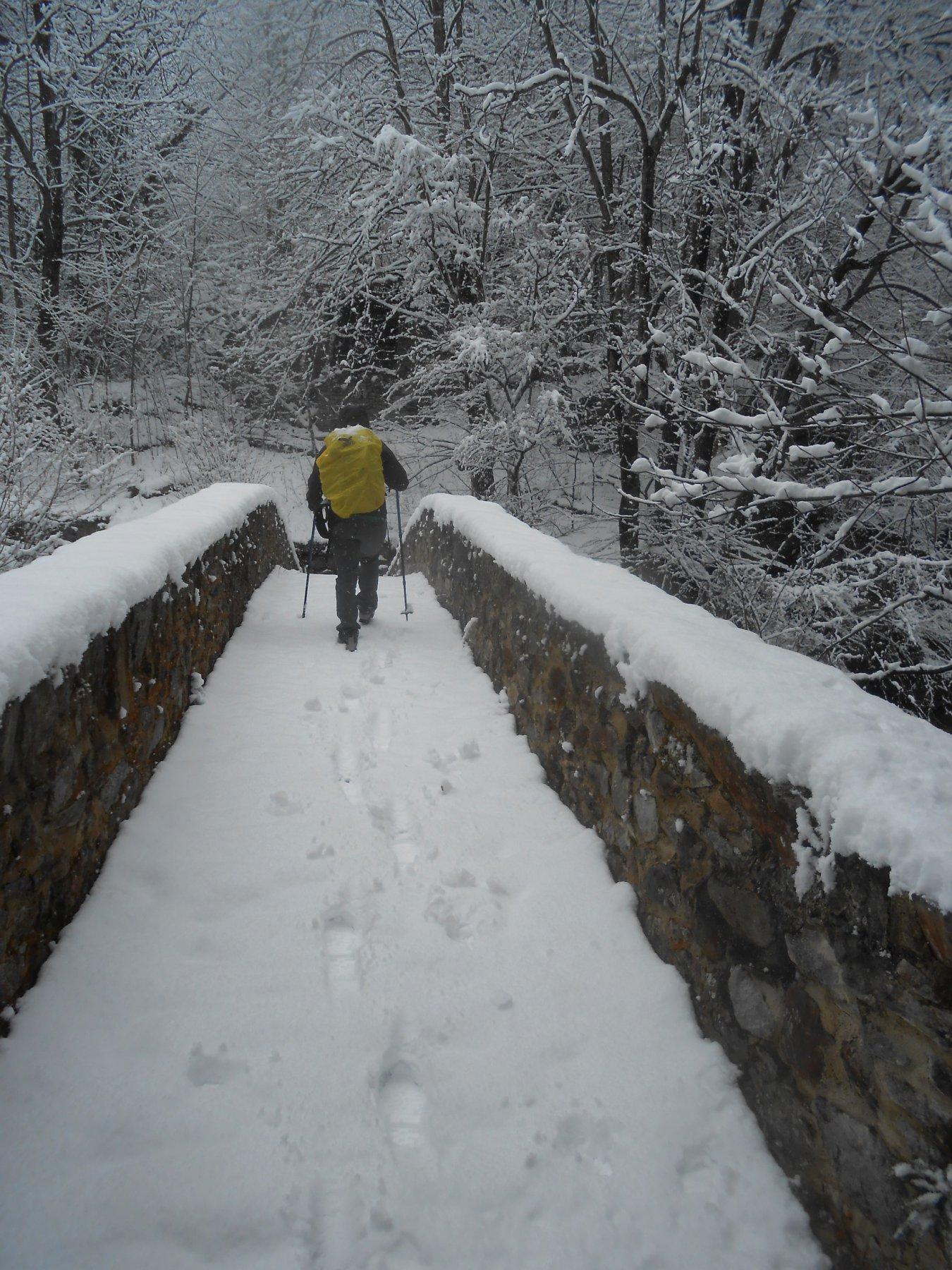 Ponte del Linguissot