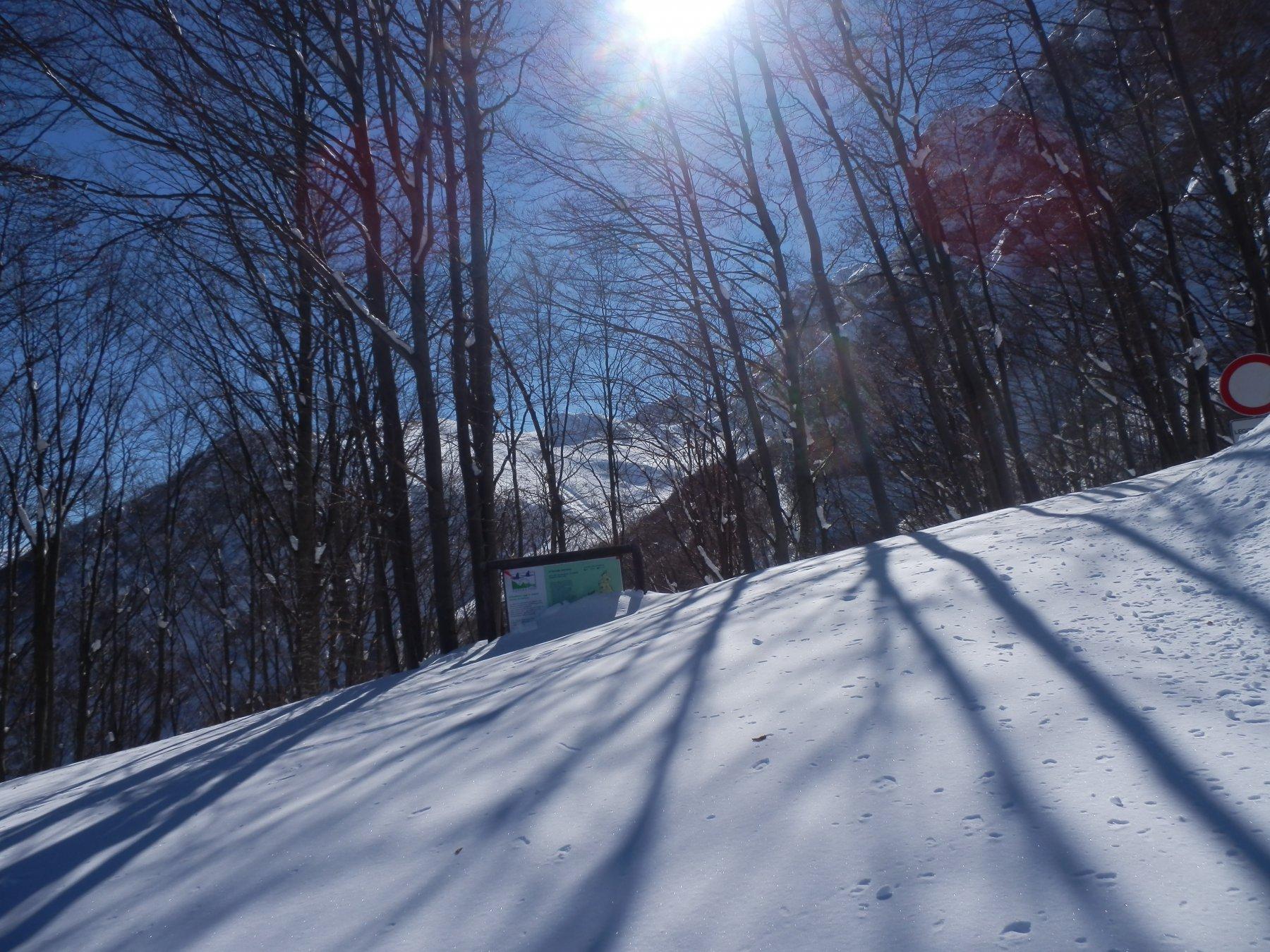 passaggio a q. 1500 circa, si nota il livello della neve