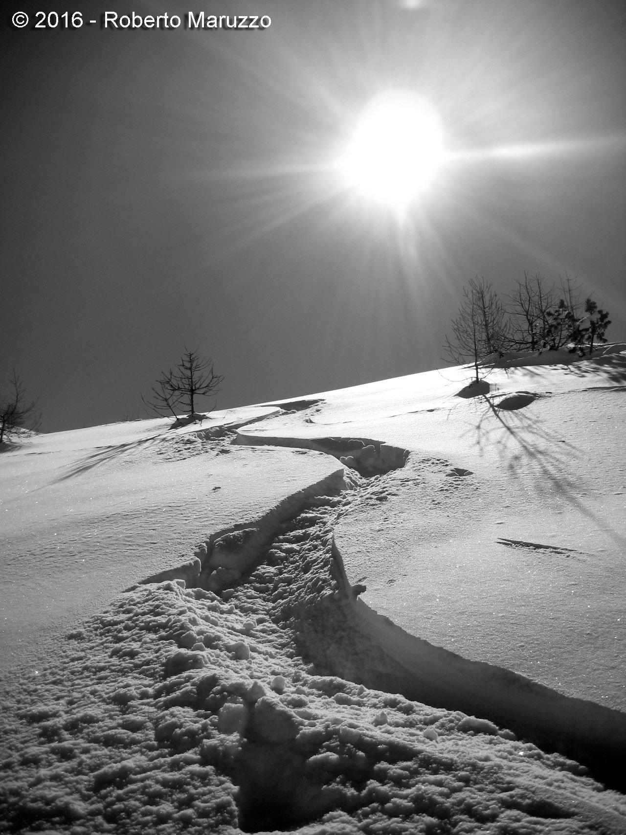 meraviglia di neve