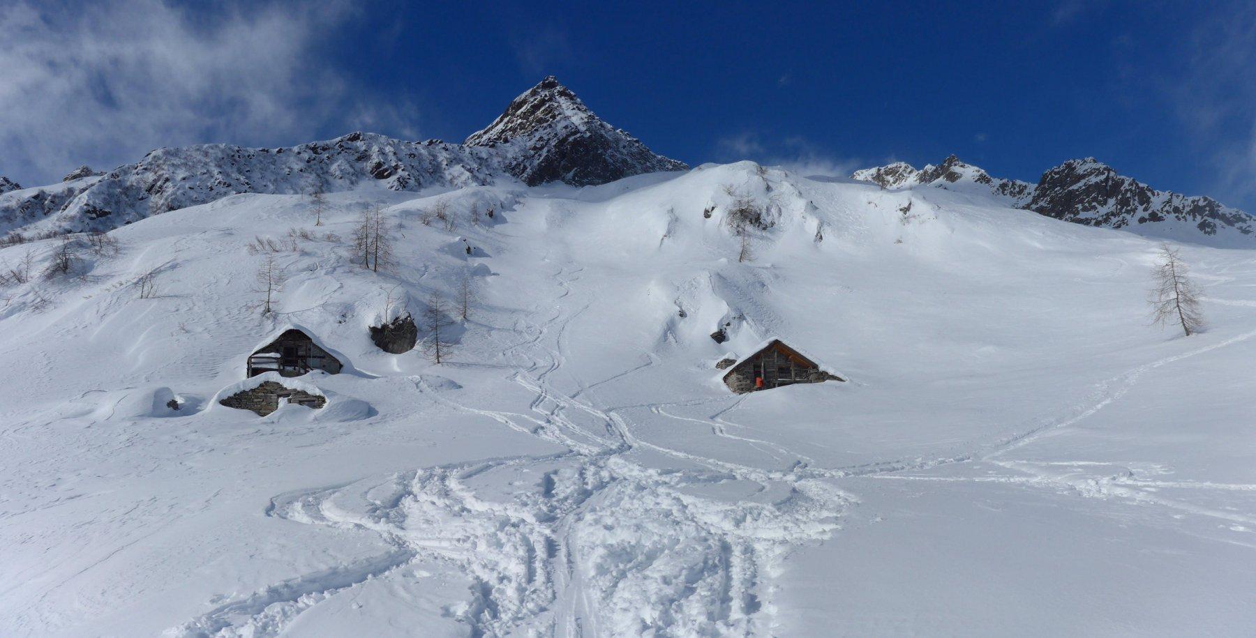 Alpe Trasinera Bella
