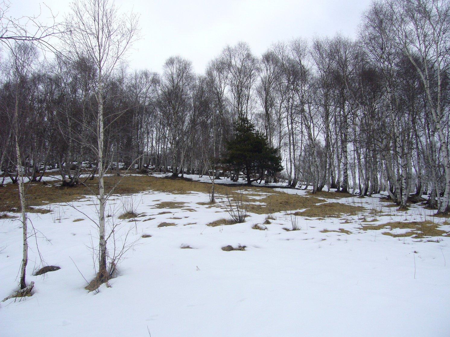pochissima neve alla partenza
