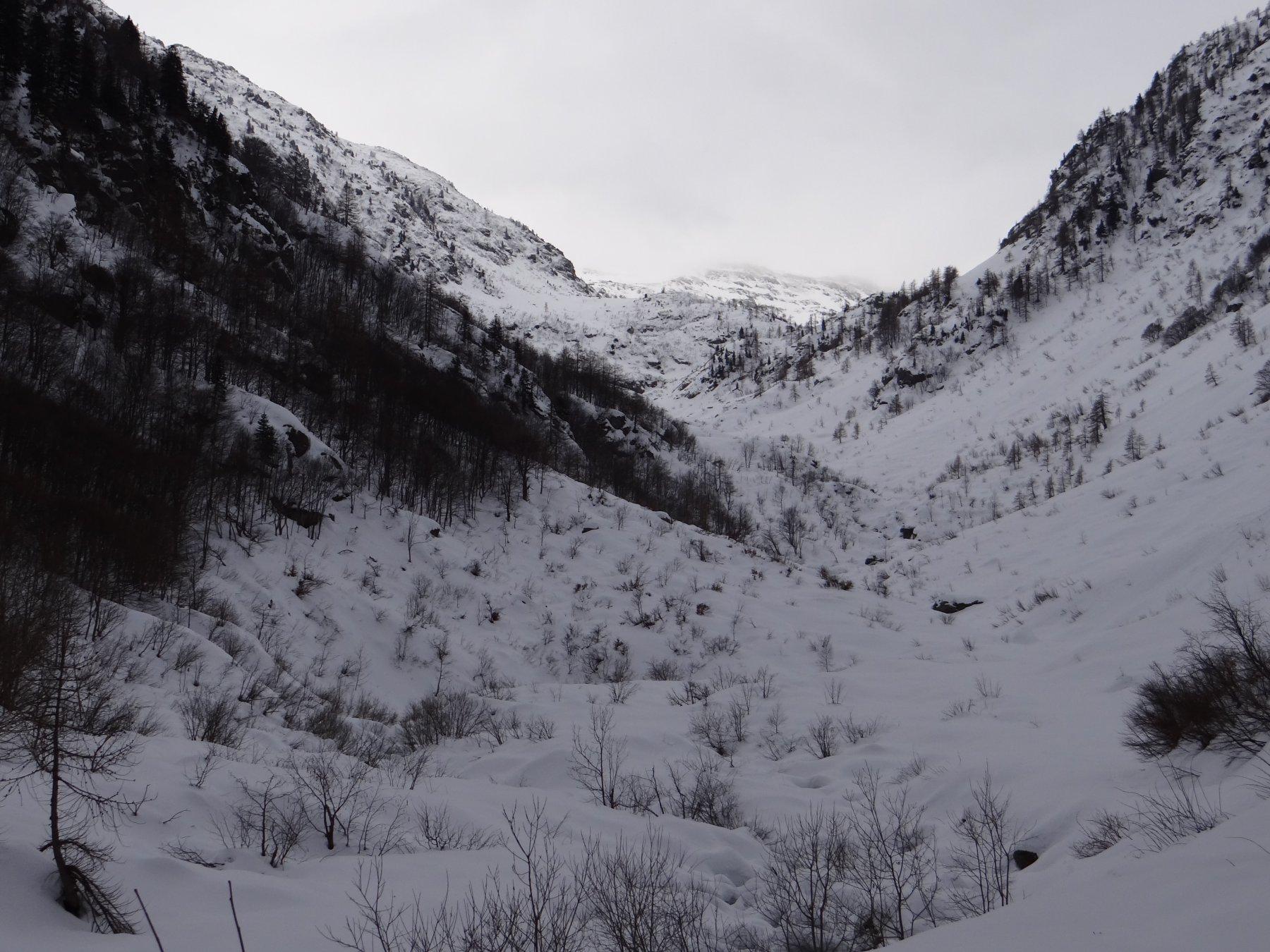 Salendo lungo il vallone principale (Gias Traversa), si notano ancora i segni delle valanghe estreme del 2008-2009