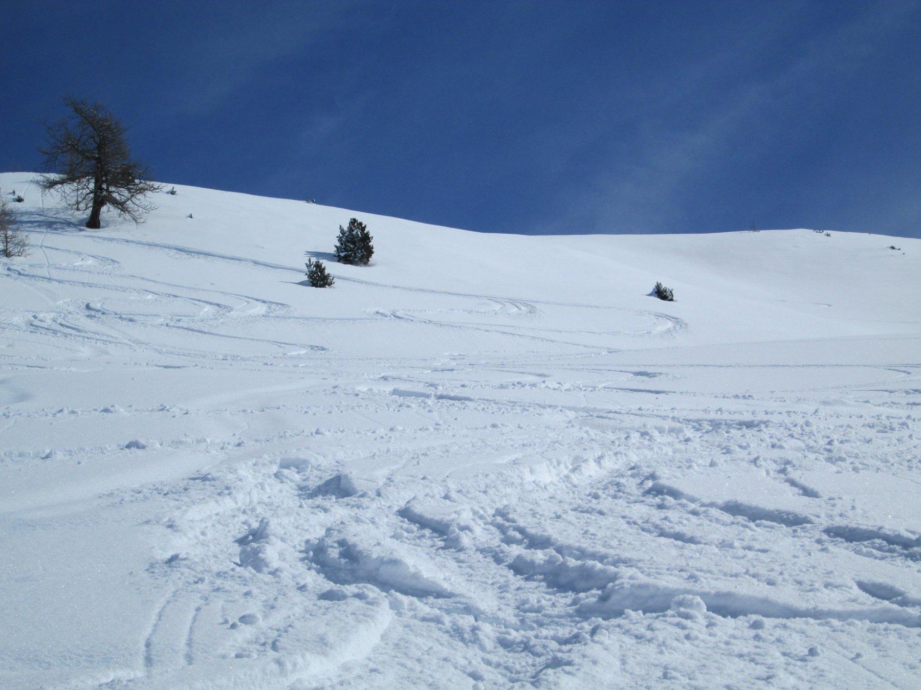 neve farinosa in discesa