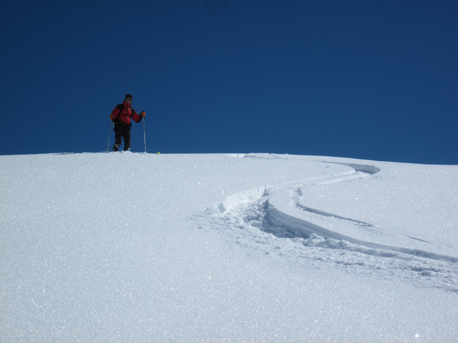 pennellate sulla neve vergine