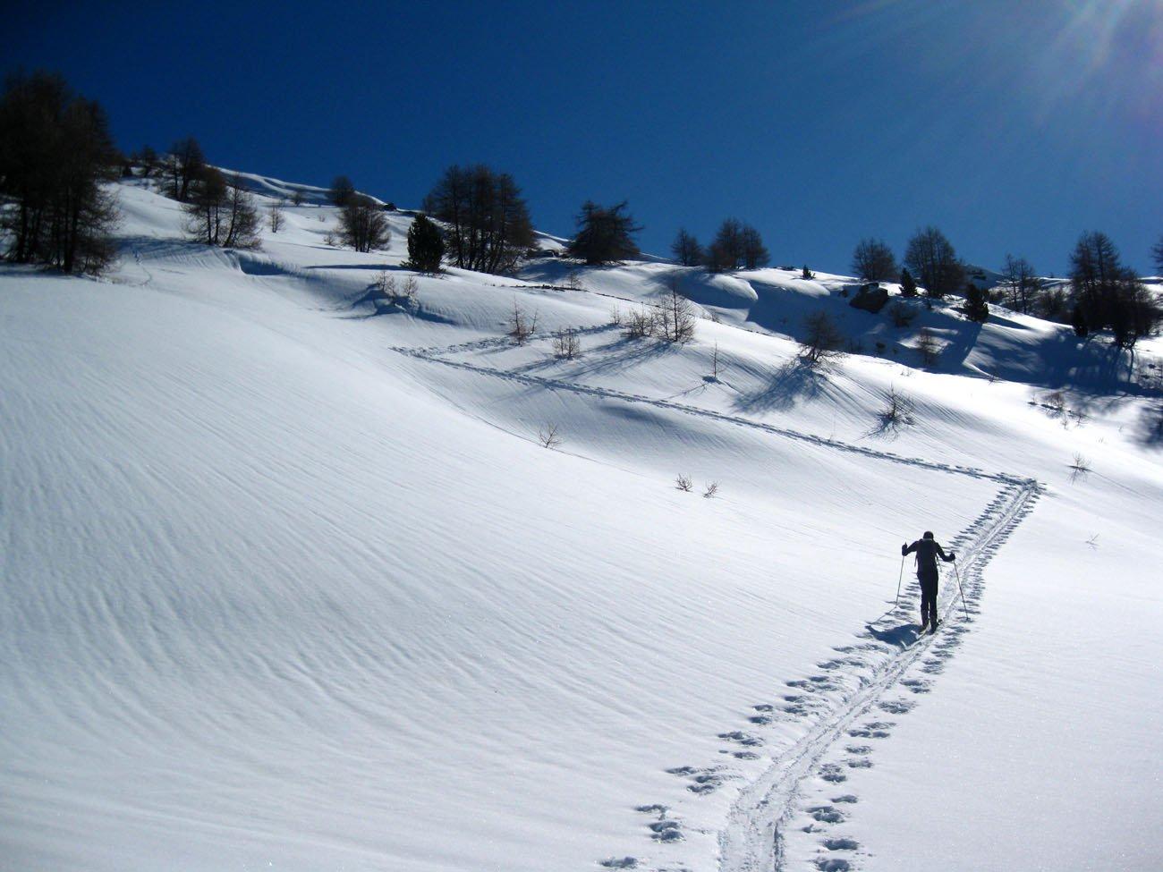 Neve tanta e bella.... da vedere