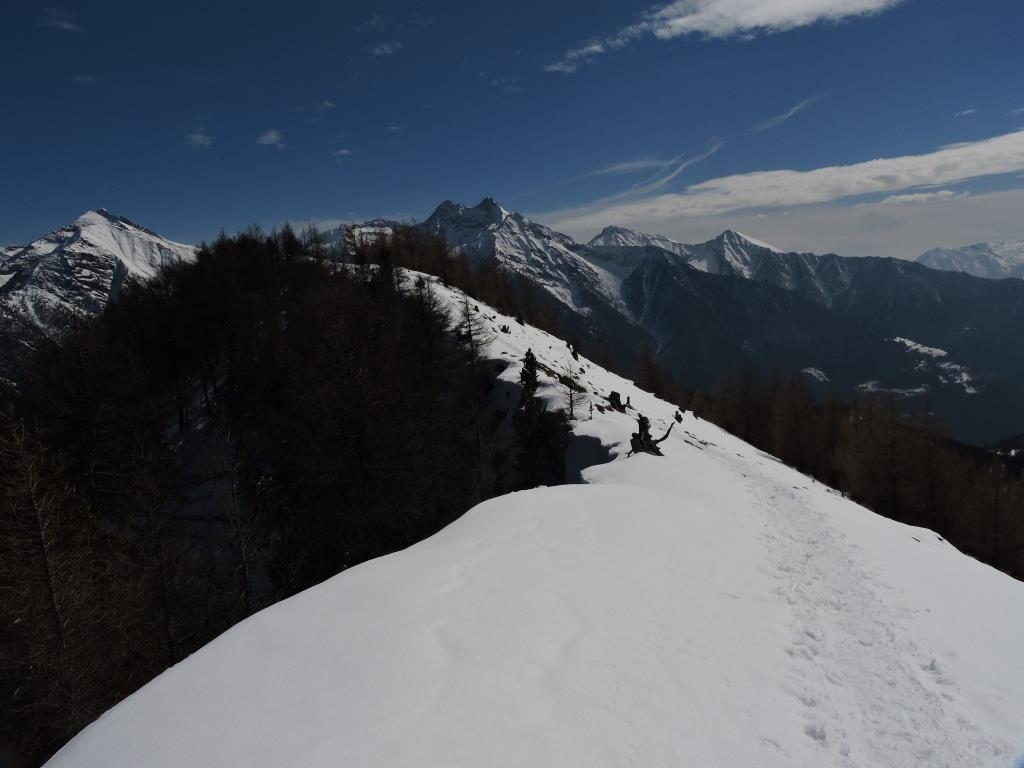 La crestina verso il Col de Joux
