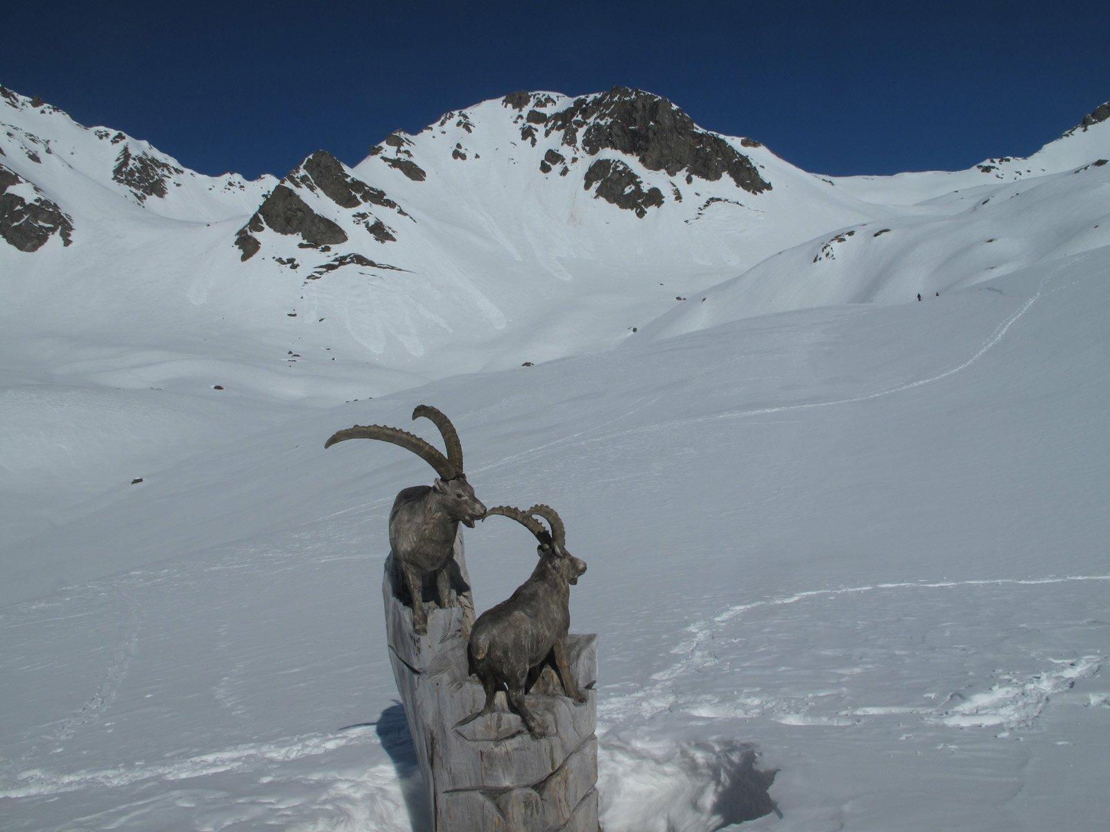 La cima ed il colle Finestra visti dai pressi del rifugio Fallere