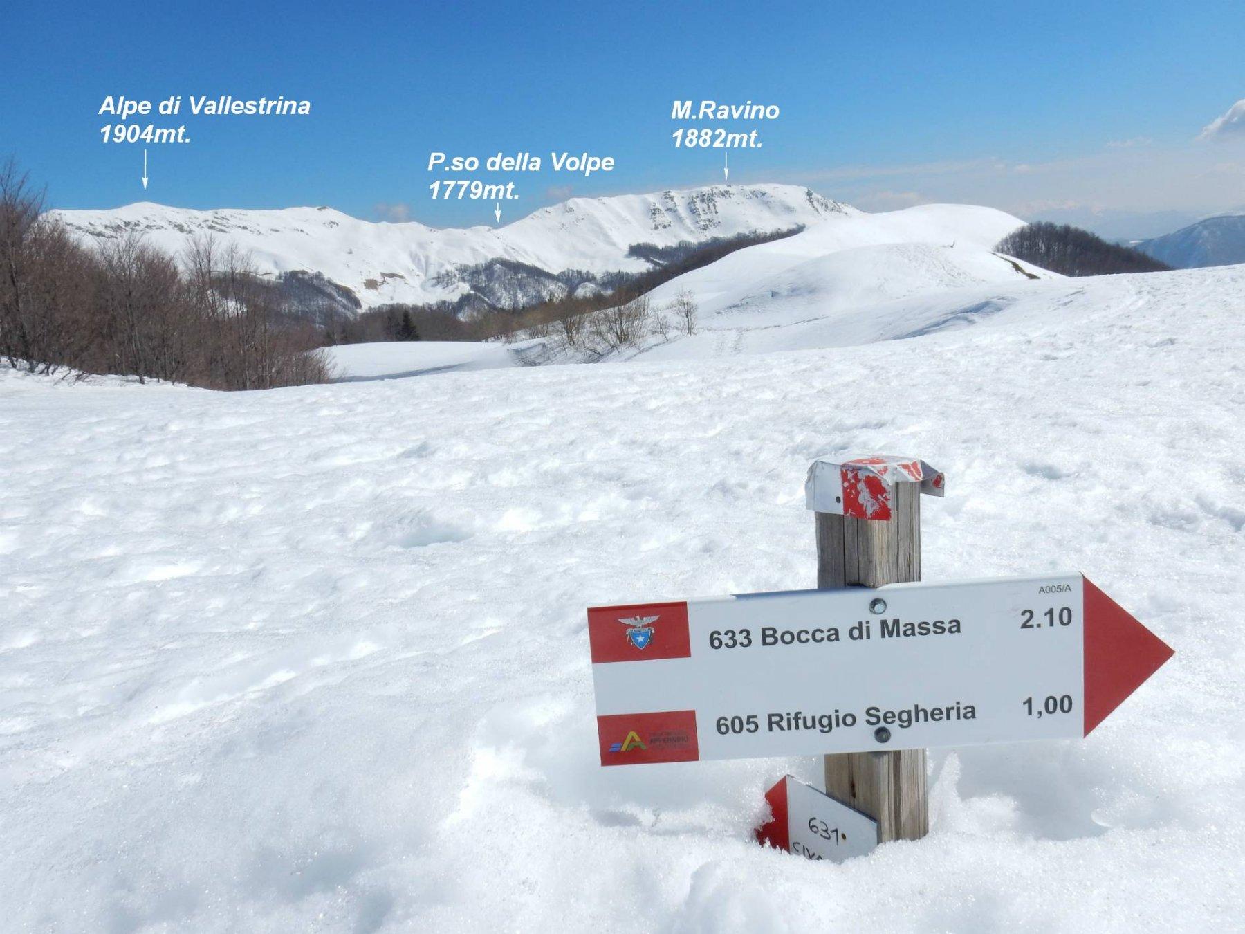 Arriviamo al P.so di Lama Lite 1781mt. dove la neve copre quasi le paline.
