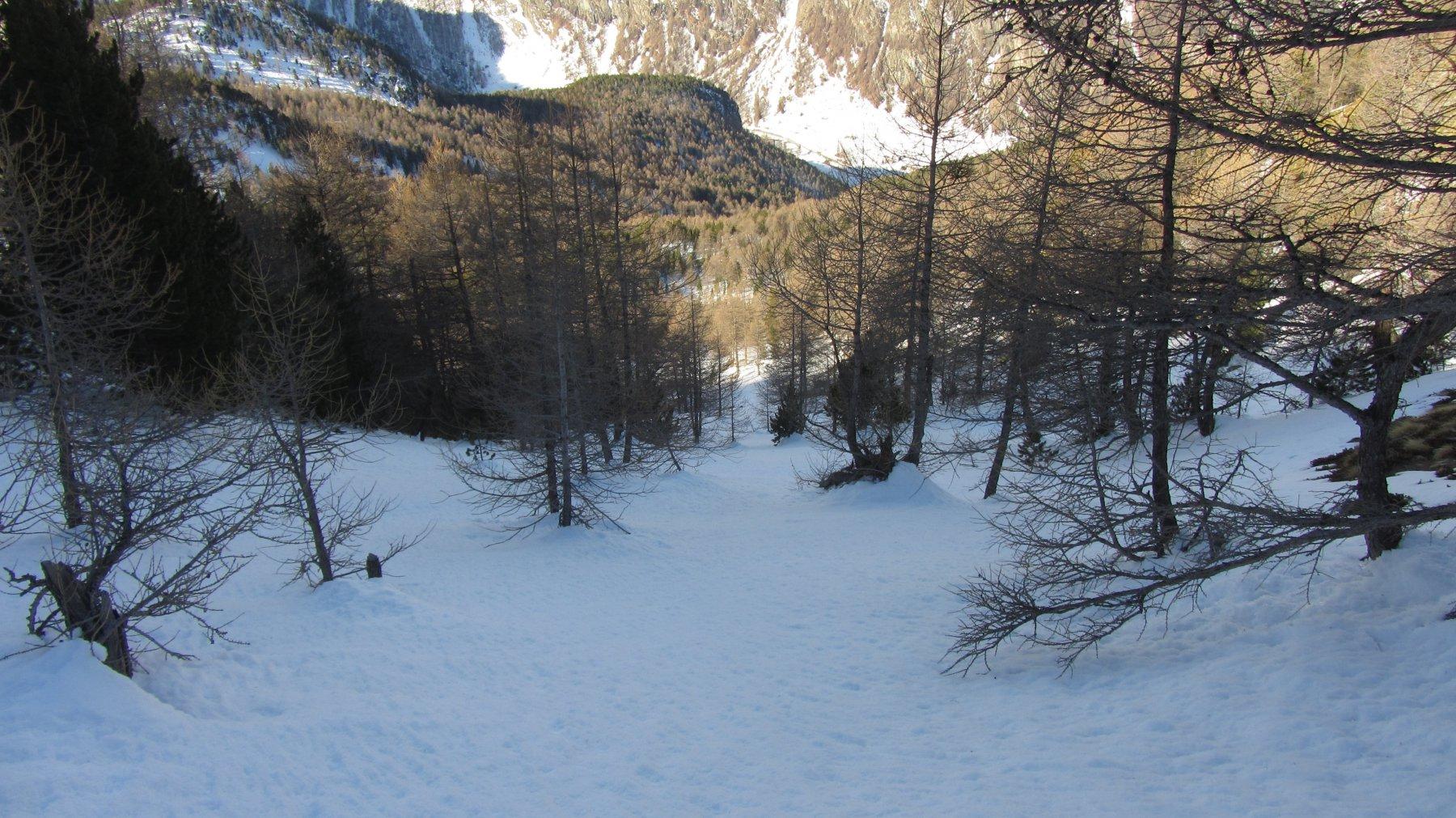Quasi al fondo del pendio canale percorso per evitare buona parte del sentiero di salita