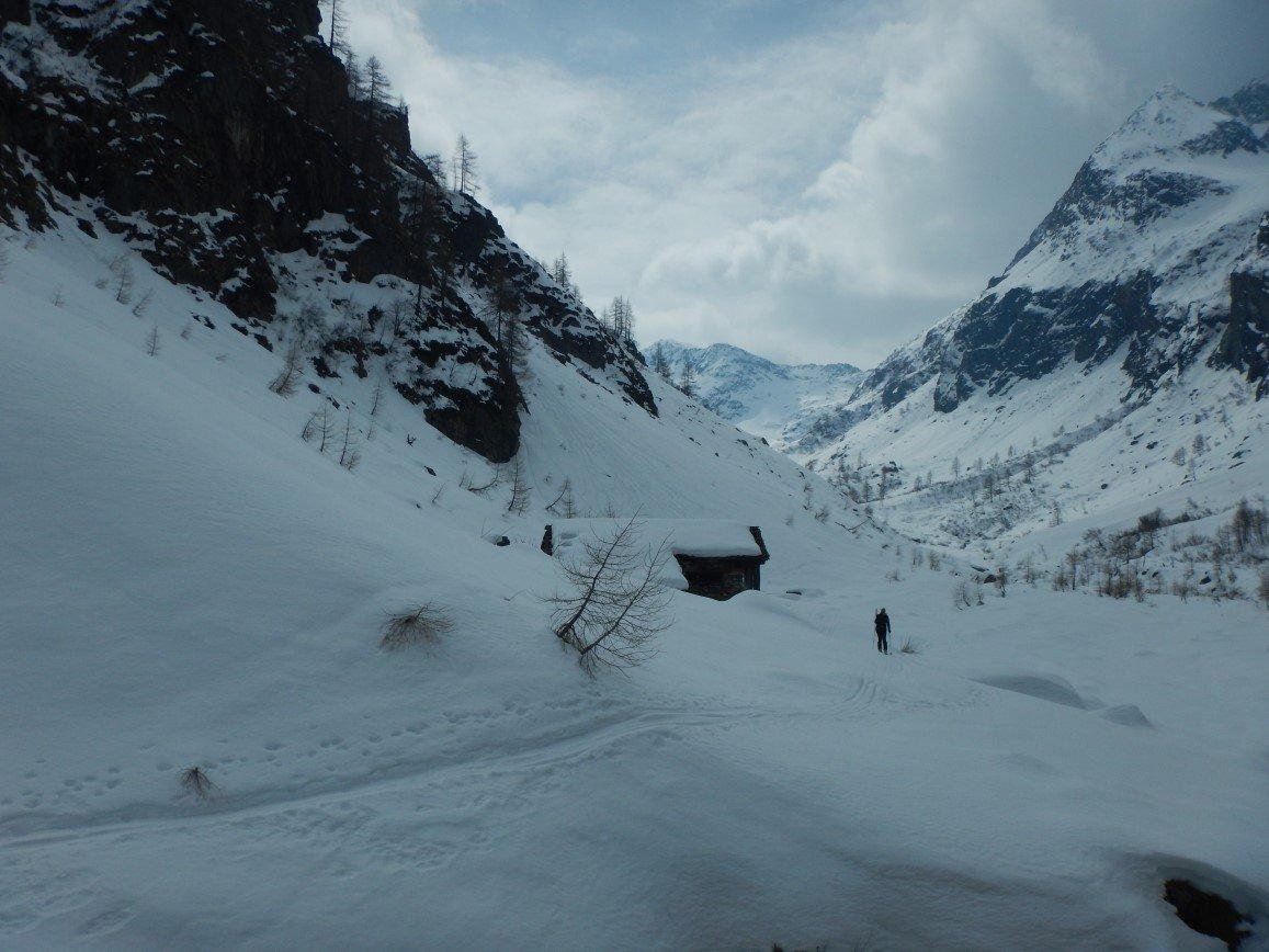 Alpe Buzzo e Val Vogna