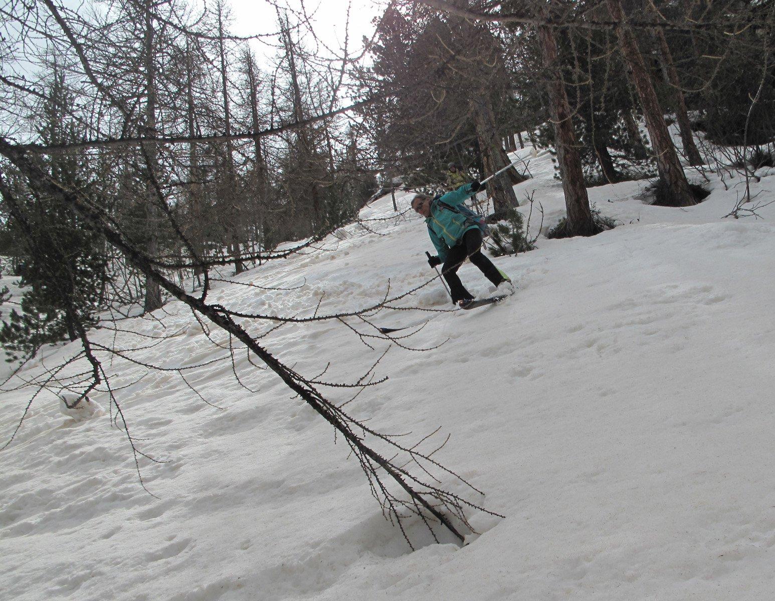 Discesa impegnativa nel bosco verso Nevache