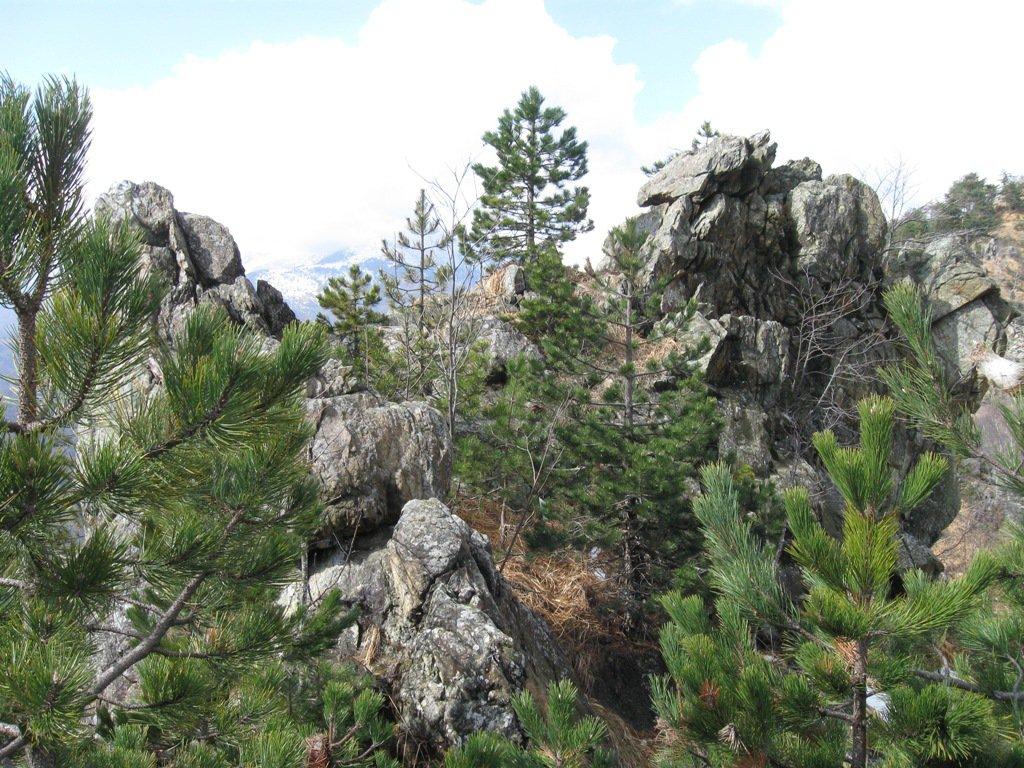 ambiente di cresta II